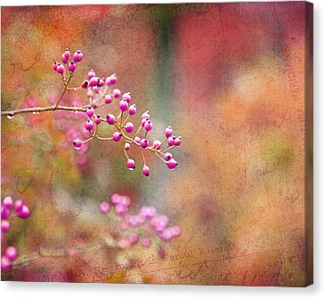Tie Dyed Berries In Pink Orange And Gold  Canvas Print by Brooke T Ryan