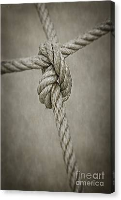 Tied Knot Canvas Print