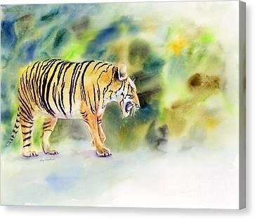 Tiger Canvas Print by Amy Kirkpatrick