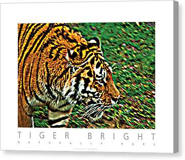 Canvas Print featuring the photograph Tiger Bright  Naturally Rare Poster by David Davies