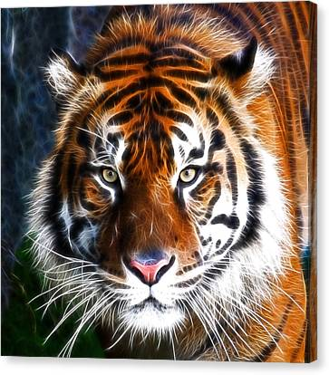 Tiger Close Up Canvas Print by Steve McKinzie