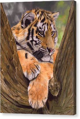 Tiger Cub Painting Canvas Print by David Stribbling