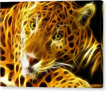 Macros Canvas Print - Tiger Face  by Mark Ashkenazi