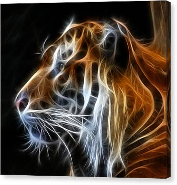 Tiger Fractal Canvas Print by Shane Bechler