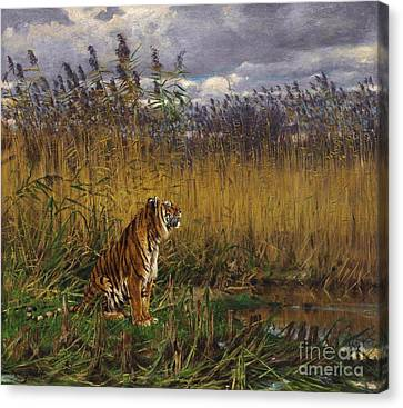 Tiger In A Landscape Canvas Print by Pg Reproductions