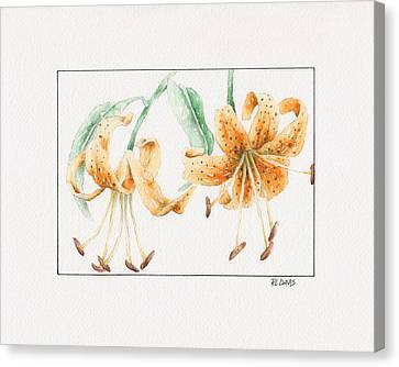 Canvas Print featuring the painting Tiger Lilies by Rebecca Davis