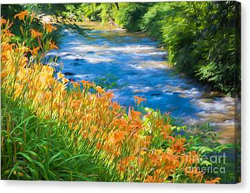 Finger Lakes Canvas Print - Tiger Lily Creek by Michele Steffey