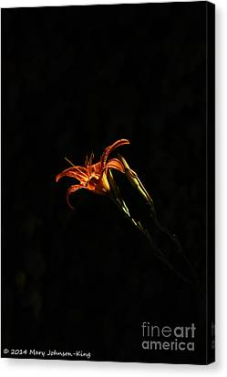 Mary King Canvas Print - Tiger Lily by Mary  King