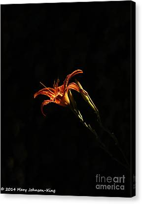 Mary King Canvas Print - Tiger Lily On Black by Mary  King