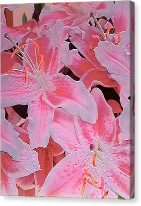 Tiger Lily Relief Canvas Print by Norman Hollands