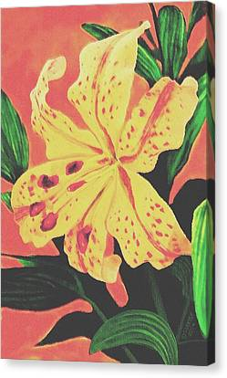 Canvas Print featuring the painting Tiger Lily by Sophia Schmierer