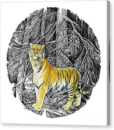Tiger Canvas Print by Natalie Berman