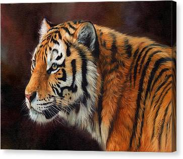 Tiger Portrait  Canvas Print by David Stribbling