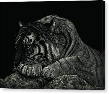 Tiger Power At Peace Canvas Print