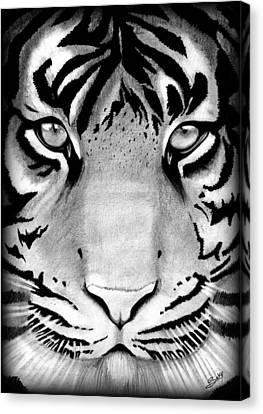 Tiger Canvas Print by Saki Art