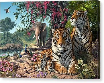 Tiger Sanctuary Canvas Print by Steve Read