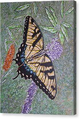 Tiger Swallowtail Butterfly Canvas Print by Kathy Marrs Chandler