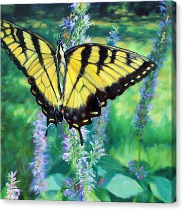 Tiger Swallowtail- Enjoying The Sweetness Canvas Print by Bonnie Mason