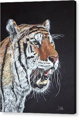 Growling Canvas Print - Tiger Tiger Burning Bright by John Hebb