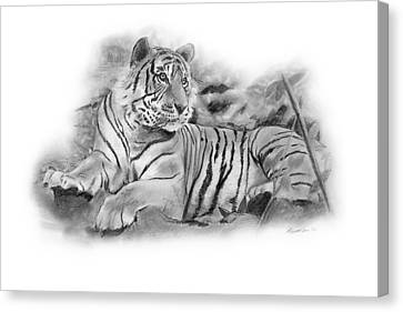 Tiger Tiger Canvas Print by Timothy Ramos