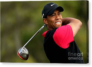 Tiger Woods Golf Canvas Print by Lanjee Chee