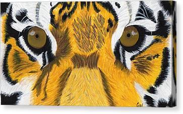 Tiger's Eyes Canvas Print by Bav Patel