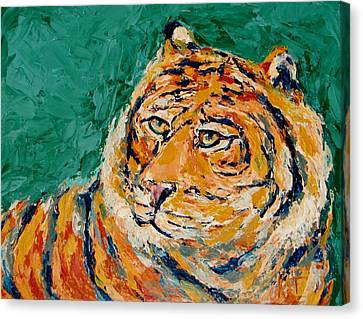 Tiger's Focus Canvas Print by Kat Griffin