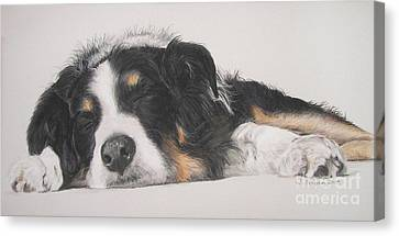 Tim Canvas Print by Joanne Simpson