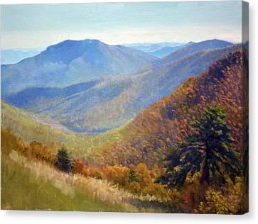 Timber Hollow Overlook Canvas Print
