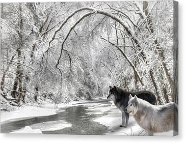 Timber Wolves Canvas Print by Lori Deiter
