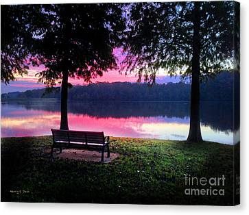 Time Alone Canvas Print by Nancy E Stein
