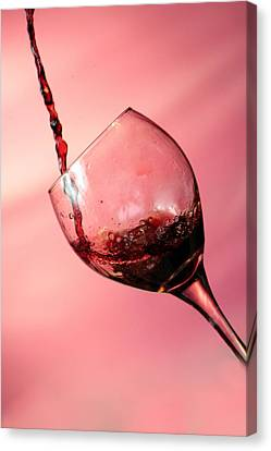 Time For Wine  Canvas Print by Michael Ledray
