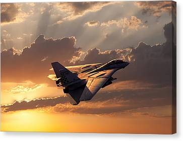 Timeless Beauty Tomcat Canvas Print by Peter Chilelli