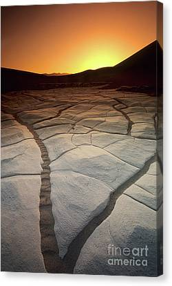 Wild Dunes Canvas Print - Timeless Death Valley by Bob Christopher