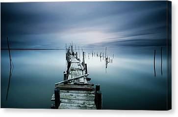 Timeless Canvas Print by Paulo Dias