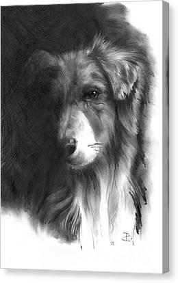 Canvas Print featuring the drawing Timmy by Paul Davenport
