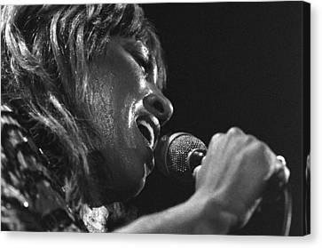 Tina Turner 1 Canvas Print