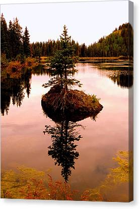 Canvas Print featuring the photograph Tiny Island by Karen Shackles
