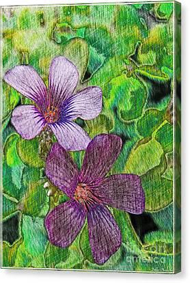 Tiny Purple Flowers Photoart Canvas Print by Debbie Portwood