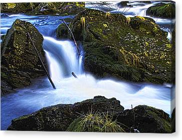 Canvas Print featuring the photograph Tiny Water Fall by Timothy Latta