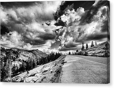 Tioga Pass Canvas Print by Cat Connor