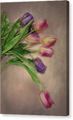 Tip Toe Thru The Tulips Canvas Print by Mary Timman