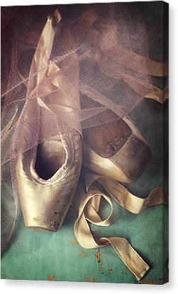 Tiptoes Canvas Print by Amy Weiss