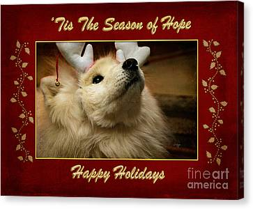 'tis The Season Of Hope Happy Holidays Canvas Print by Lois Bryan