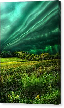 Take My Hand Canvas Print by Phil Koch