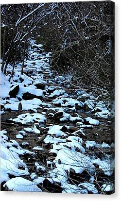Tn Creek Canvas Print by Joyce Brooks