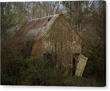 Canvas Print featuring the photograph To Be Versed In Country Things by Rebecca Sherman