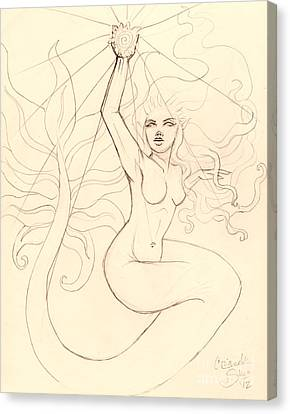 ...to Catch A Falling Star... Sketch Canvas Print by Coriander  Shea