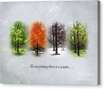 To Everything There Is A Season Canvas Print