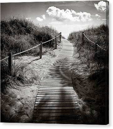 To The Beach Canvas Print by Dave Bowman